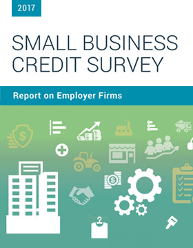 Report on Employer Firms