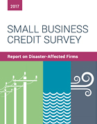 Report on Disaster-Affected Firms