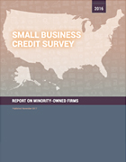 Report on Minority-Owned Firms