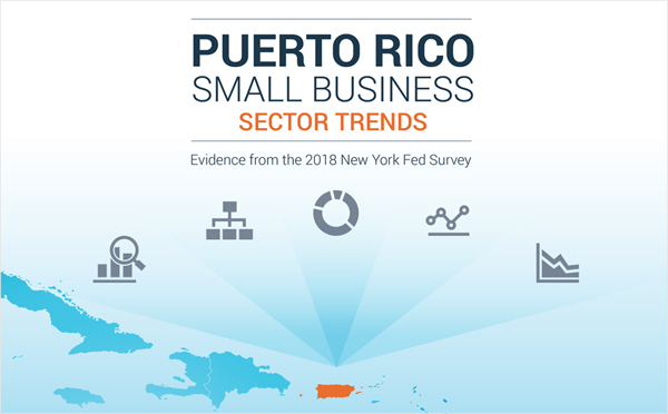 Report cover of Puerto Rico Small Business Sector Trends: Evidence from the 2018 New York Fed Survey